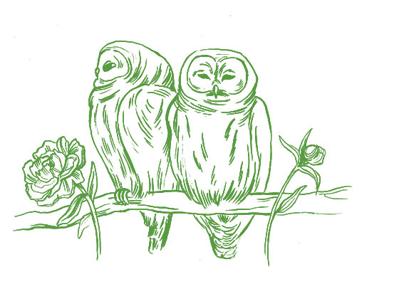 eulen-gruen-paar